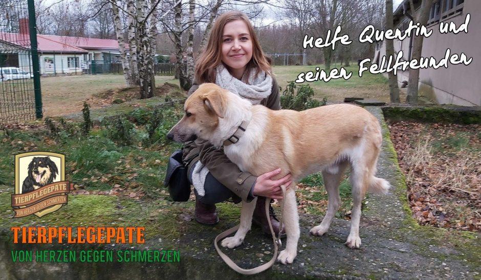 Tierpflegepate für Quentin und seine Fellfreunde: Jetzt helfen. Aktion läuft noch bis 2. Februar!